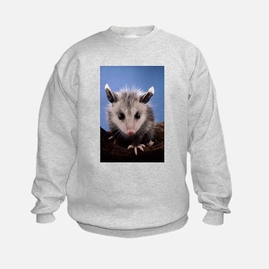Cute Opossum Sweatshirt