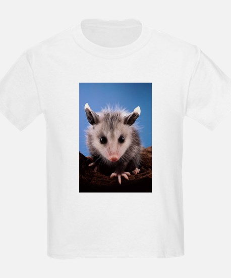 Cute Opossum T-Shirt