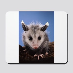 Cute Opossum Mousepad