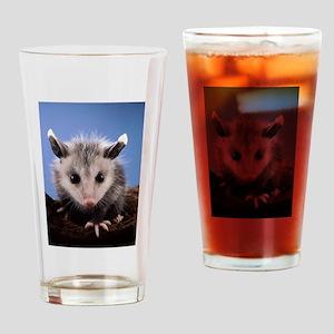 Cute Opossum Drinking Glass