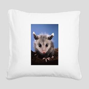 Cute Opossum Square Canvas Pillow