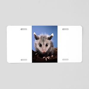 Cute Opossum Aluminum License Plate