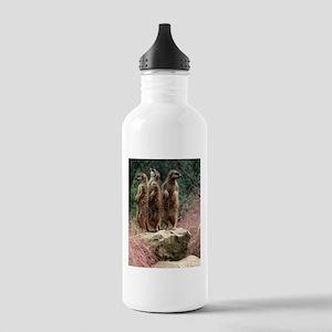Meerkats On A Rock Stainless Water Bottle 1.0L