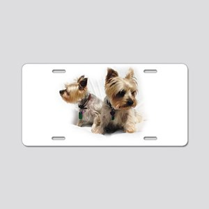 Silky Terriers Aluminum License Plate