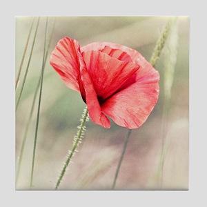 Wild Poppy Flower Tile Coaster