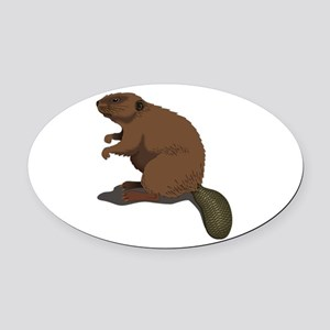 Cute Beaver Sitting Oval Car Magnet
