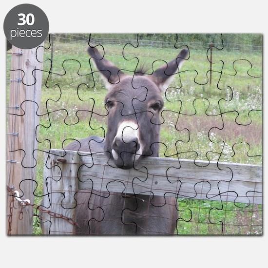 Cute Miniature donkey Puzzle