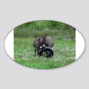 Miniature donkeys playing with a tire Sticker