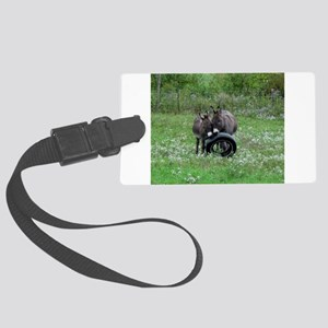 Miniature donkeys playing with a Large Luggage Tag