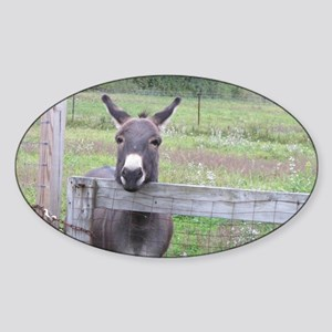 Miniature Donkey II Sticker