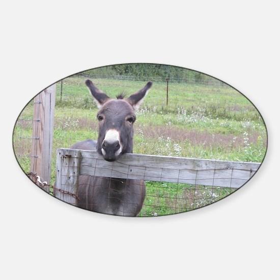 Miniature Donkey II Decal