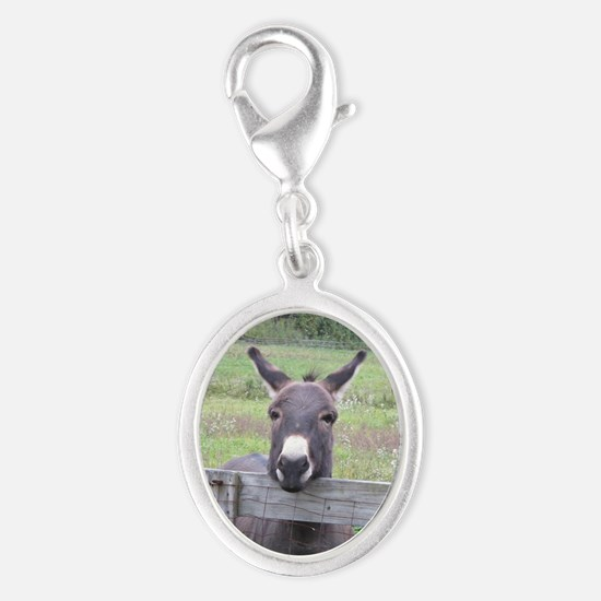 Miniature Donkey II Charms