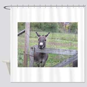 Miniature Donkey II Shower Curtain