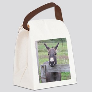 Cosmo at the Gate Canvas Lunch Bag