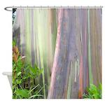 Rainbow Eucalyptus Tree Shower Curtain