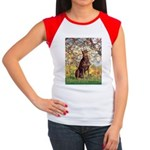 Spring / Doberman Women's Cap Sleeve T-Shirt