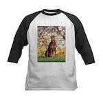 Spring / Doberman Kids Baseball Jersey