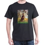 Spring / Doberman Dark T-Shirt
