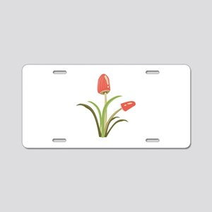 Mushrooms_Base Aluminum License Plate