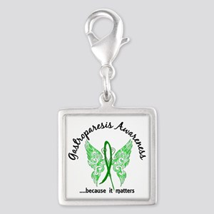 Gastroparesis Butterfly 6.1 Silver Square Charm