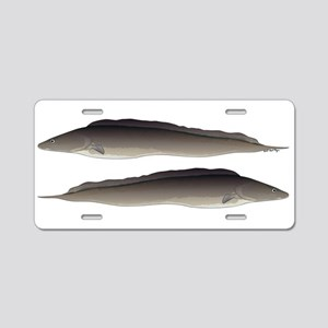 Aba African Knifefish Aluminum License Plate