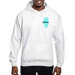 True Blue Illinois LIBERAL - Hooded Sweatshirt