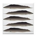 Aba African Knifefish Tile Coaster