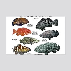 Groupers of the World Mini Poster Print
