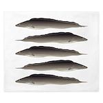 Aba African Knifefish King Duvet