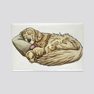 Sleeping Golden Retriever Magnets