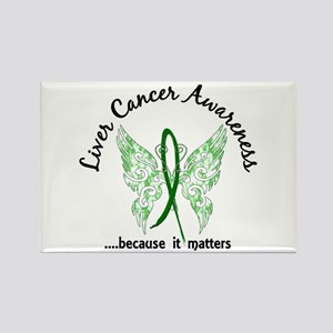 Liver Cancer Butterfly 6.1 Rectangle Magnet