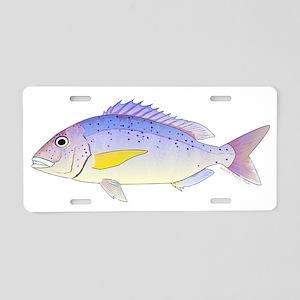 Dentex Aluminum License Plate
