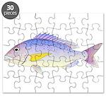 Dentex Puzzle