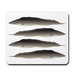 Aba African Knifefish Mousepad