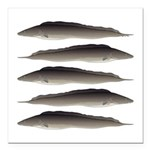 Aba African Knifefish Square Car Magnet 3