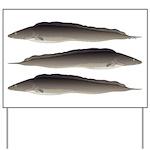 Aba African Knifefish Yard Sign