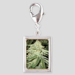Marijuana Plant Charms