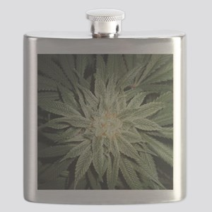 Cannabis Plant Flask