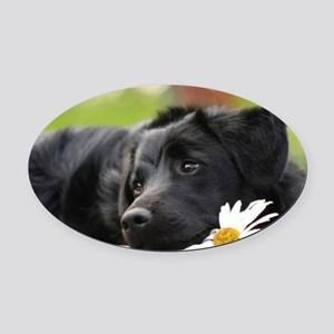 Black Lab Oval Car Magnet