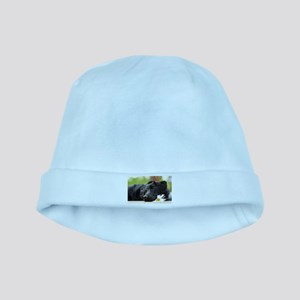 Black Lab baby hat