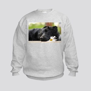 Black Lab Kids Sweatshirt