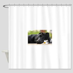 Black Lab Shower Curtain