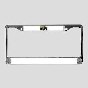 Black Lab License Plate Frame