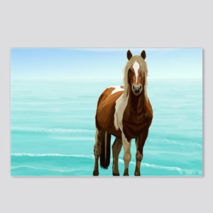 Chincoteague Paint Pony a Postcards (Package of 8)