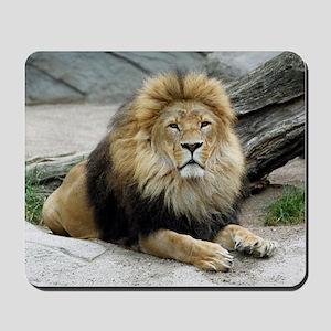 Lion_2014_1001 Mousepad
