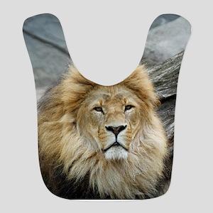 Lion_2014_1001 Bib