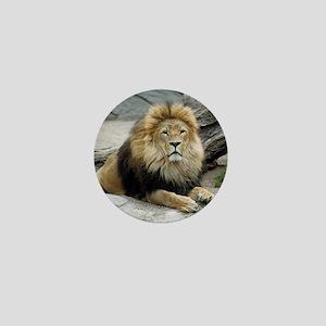Lion_2014_1001 Mini Button