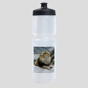 Lion_2014_1001 Sports Bottle