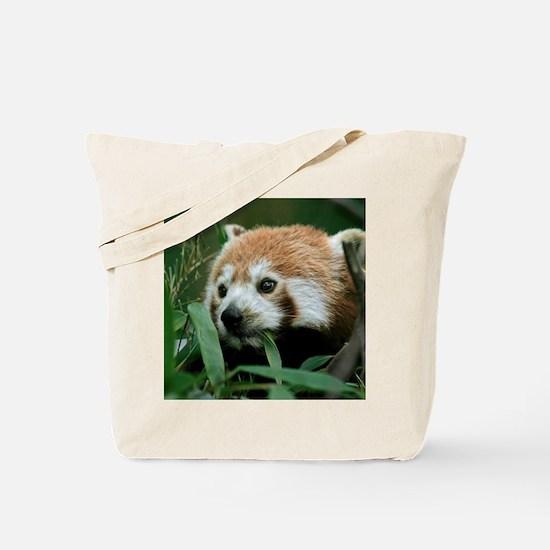 Red_Panda_2014_1101 Tote Bag