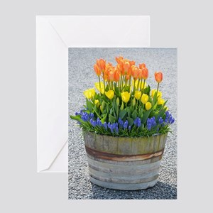 Spring tulips barrel planter Greeting Cards